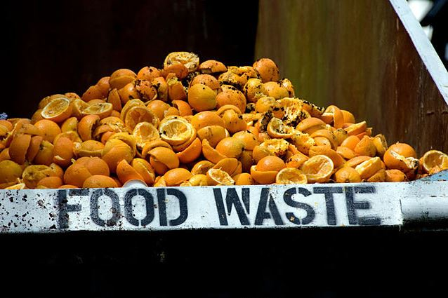 Britain gets creative in fighting rampant food waste