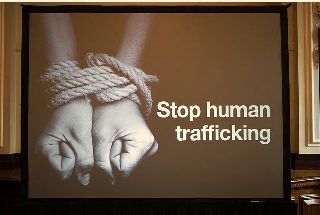 From DNA to laws to data, five key tools to combat trafficking in 2017