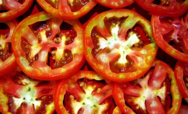 Researchers turn waste tomatoes into tires