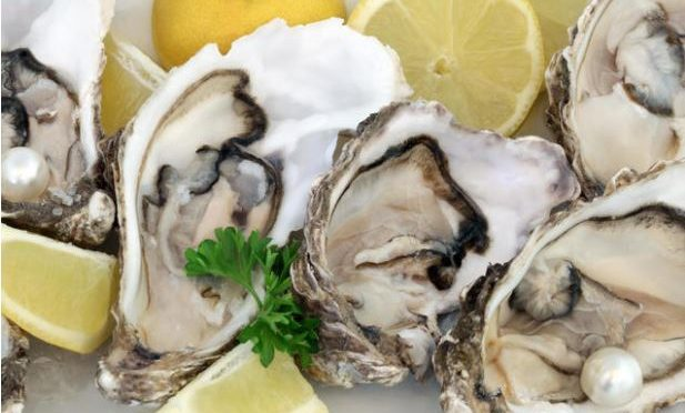 Scientists develop 'super oyster' resistant to deadly virus