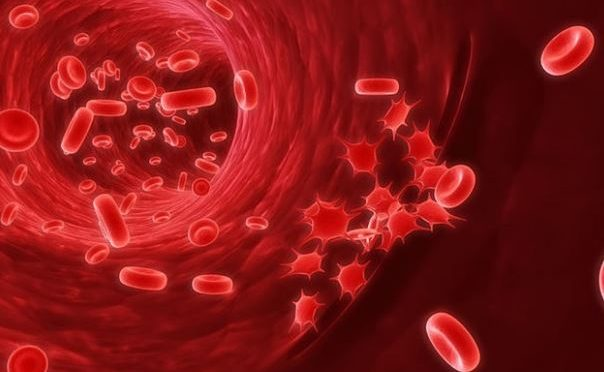 Blood 'master switch' may help end platelet shortages