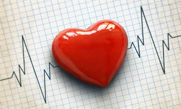 3-D printed models reveal source of human heartbeat