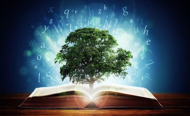 Researchers develop new scale to measure wisdom