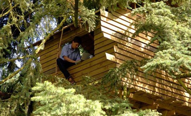 Microsoft builds treehouse offices