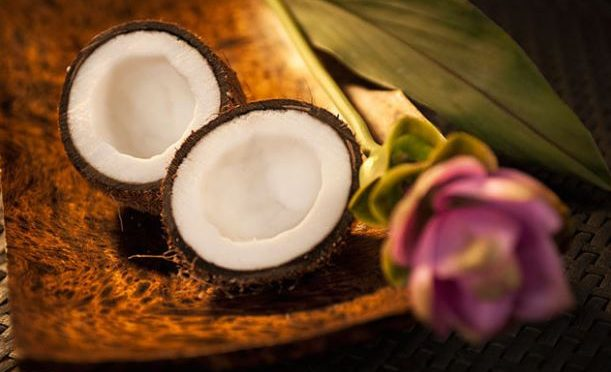 Chinese scientists complete genome sequencing for coconut