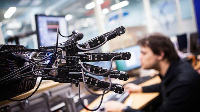 Stingray soft robot may promote bio-inspired robotics